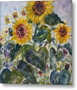 Martha's Sunflowers Metal Print