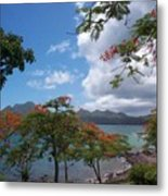 Martinique Metal Print