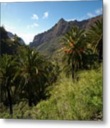 Masca Valley And Parque Rural De Teno 2 Metal Print