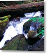 Mason Creek  Metal Print