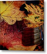 Master Of Colouring Metal Print