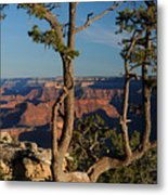 Mather Point South Rim Grand Canyon Metal Print