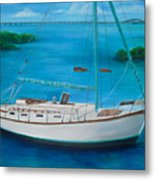 Matilda In The Florida Keys Metal Print