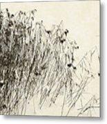 Matsuo Basho Remembering Metal Print