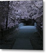 Matthiessen State Park Bridge False Color Infrared No 2 Metal Print