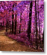 Matthiessen State Park Trail False Color Infrared No 2 Metal Print