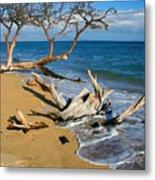 Maui Beach Dirftwood Fine Art Photography Print Metal Print