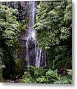 Maui Waterfall Metal Print