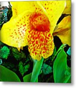 Maui Yellow Floral Metal Print
