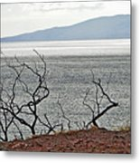 Maui's View Of Lanai Metal Print