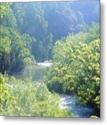 Maury River Metal Print