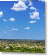 Mayan Temple And Landscape Metal Print
