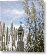 Mayflower Memorial Through The Pampas Grass Metal Print