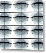 Mayfly Wings Design Atalophlebia Albiterminata  Metal Print