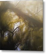 Me Fuddled Metal Print