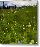 Meadow Beneath The Storm Metal Print