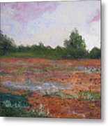 Meadow Creek - Late Summer Metal Print