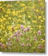 Meadow Dreams... Metal Print