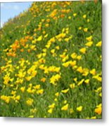 Meadow Hillside Poppy Flowers 8 Poppies Artwork Gifts Metal Print