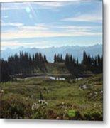 Meadow Mountain View Metal Print