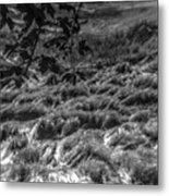 Meadow Of Montaigle Metal Print