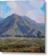 Meadow Of The Mountain Metal Print