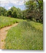 Meadow Path Metal Print