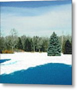 Meadow Snow Metal Print