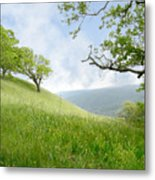 Meadow View Spring Metal Print