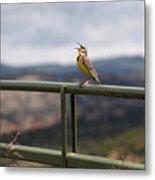 Meadowlark Sings Metal Print