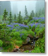 Meadows In The Mist Metal Print