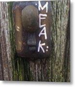 M.e.a.k. Metal Print