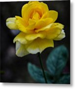 Meanings Of Yellow Metal Print