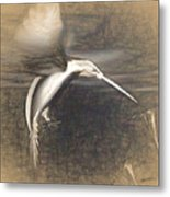 Mechanical Hummingbird Metal Print