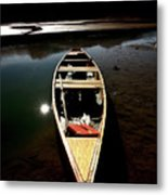 Medicine Lake In Jasper National Park Metal Print