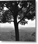 Meditation Tree  Metal Print