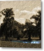 Meet Me By The Willows Metal Print