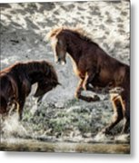 Meeting On The River  Metal Print