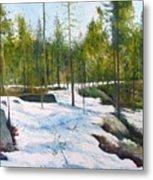 Melting Snow At Umea Norrbotten Sweden 2002   Metal Print
