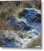 Melting Snow On Plants Metal Print