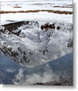 Melting View Metal Print