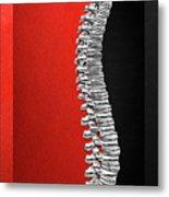 Memento Mori - Silver Human Backbone Over Red And Black Canvas Metal Print