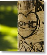 Memories In The Aspen Tree Metal Print