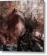 Memories Of A Life Lived Metal Print