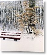 Memories Of Birchtrees Metal Print
