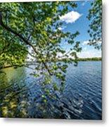 Mendota Lake Metal Print