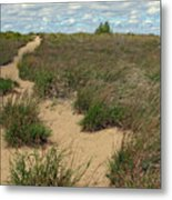 Mentor Headlands Beach Trail Metal Print