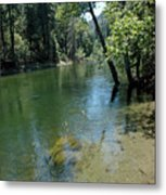 Merced River Banks Metal Print