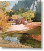 Merced River Encounter Metal Print