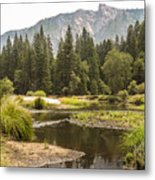 Merced River Yosemite Valley Yosemite National Park Metal Print